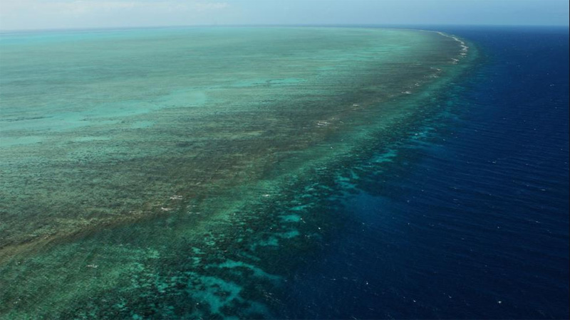 GQ Australia story: 'Does Australia Care About Saving The Great Barrier Reef?' by Andrew McMillen, January 2016